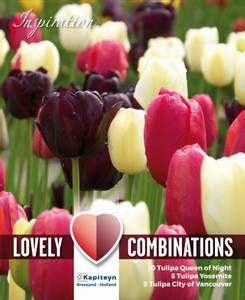 Bilde av Perfect Combinations - Sene svarte, rosa og hvite - 20 stk