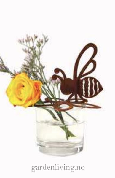 Bie på blomst med glass