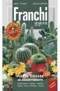 Bilde av Kaktus Mix - Cactacae