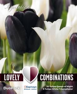Bilde av Tulipan Duopack Svart og hvit - 15 løk