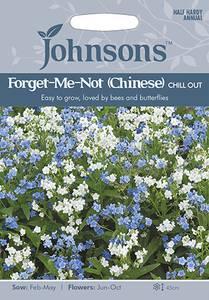 Bilde av Kinesisk forglemmegei 'Chill Out' - Cynoglossum zeylanicum