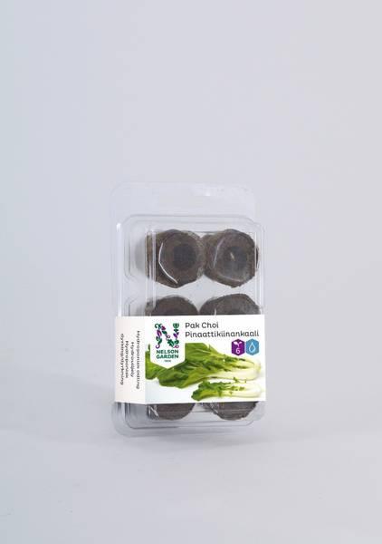 Hydroponisk, plugg med frø, pak choi