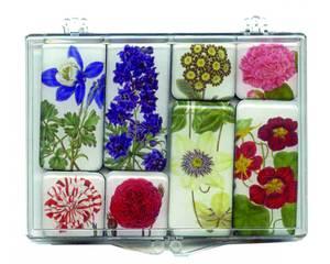 Bilde av Kjøleskapmagnetsett  8 stk - blomster