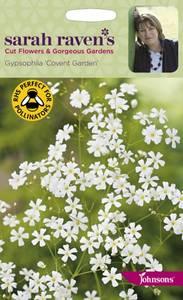 Bilde av Brudeslør 'Covent Garden' - Gypsophila elegans