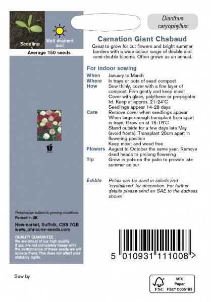 Nellik, Hage- 'Giant Chabaud Double Mixed' - Dianthus caryophyll