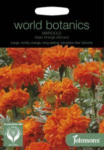 Bilde av Fløyelsblomst 'Kees  Orange' - Tagetes erecta