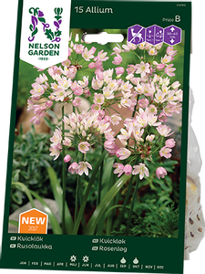 Bilde av Kvickløk - Allium roseum - 15 stk