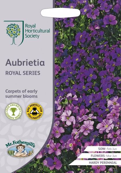 Blåpute 'Royal Series' - Aubrieta
