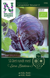 Bilde av Rødkål 'Landelijker Bewaar 2' - Brassica oleracea, Organic