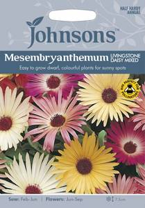 Bilde av Middagsblomst 'Livingstone Daisy Mixed' - Mesembryanthemum