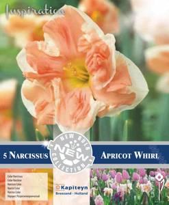 Bilde av Påskelilje 'Apricot Whirl' - Narcissus - 5 stk